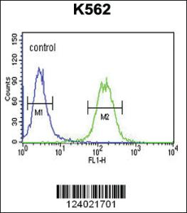 Anti-GALR1 Rabbit Polyclonal Antibody