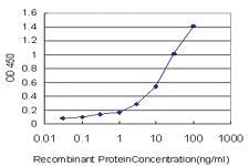 Anti-SH2D3C Mouse Monoclonal Antibody [clone: 3B2]
