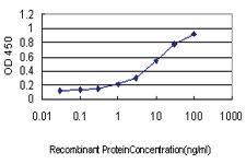 Anti-SH2D3C Mouse Monoclonal Antibody [clone: 2000]