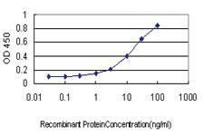 Anti-SH2D3C Mouse Monoclonal Antibody [clone: 3D6]