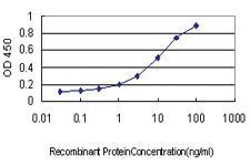 Anti-SH2D3C Mouse Monoclonal Antibody [clone: 3F5]