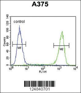 Anti-FAM96B Rabbit Polyclonal Antibody