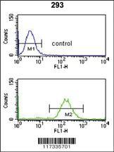 Anti-SMNDC1 Rabbit Polyclonal Antibody