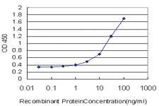 Anti-ECD Mouse Monoclonal Antibody [clone: 1A11]