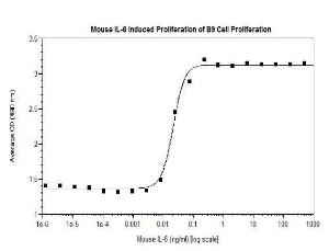 IL-6 Mouse Recombinant Protein ACF, Shenandoah Biotechnology