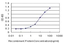 Anti-PPARGC1A Mouse Monoclonal Antibody [clone: 1F3]