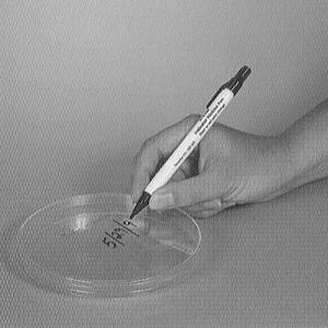 Steam Indicator Pen, Sklar