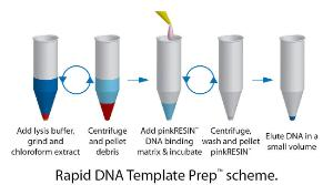 Rapid DNA Template Prep™ for Rapid Preparation of DNA Template for Small Samples, G-Biosciences