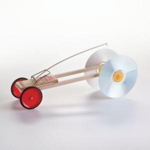 Ward's® Vehicle Kit