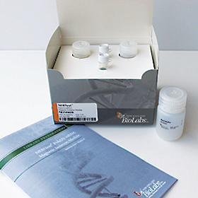NEBNext Poly(A) mRNA Magnetic Isolation Module - 96 rxns