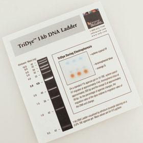 TriDye 1 kb DNA Ladder - 125 gel lanes