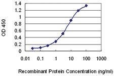 Anti-SUGP2 Mouse Monoclonal Antibody [clone: 3C5]