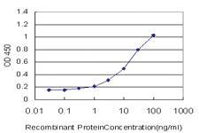 Anti-EBI3 Mouse Monoclonal Antibody [clone: 1D3]