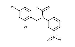 N-(2,4-Dichlorobenzyl)-N-(3-nitrophenyl)acetamide