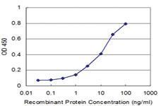 Anti-MPHOSPH6 Mouse Monoclonal Antibody [clone: 3G8-2F5]