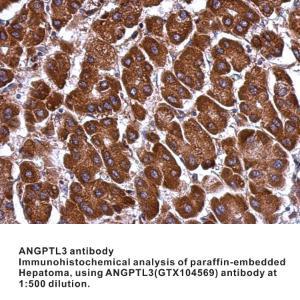 Anti-ID3 Rabbit Polyclonal Antibody