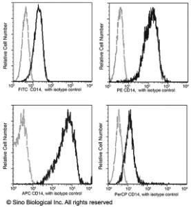 Anti-CD14 Rabbit Monoclonal Antibody (APC (Allophycocyanin)