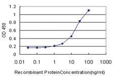 Anti-GDF11 Mouse Monoclonal Antibody [clone: 4F7]