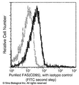 Anti-TNFRSF6 Rabbit Monoclonal Antibody (APC (Allophycocyanin)