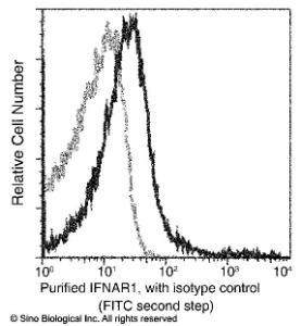 Anti-IFNAR1 Rabbit Monoclonal Antibody (FITC (Fluorescein Isothiocyanate)