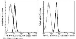 Anti-IL1R1 Rabbit Monoclonal Antibody (APC (Allophycocyanin)