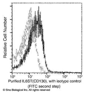 Anti-gp130 Rabbit Monoclonal Antibody (APC (Allophycocyanin)