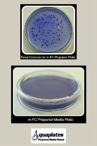 m-FC Prepared Media Plate for Fecal Coliforms