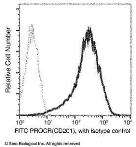 Anti-EPCR Rabbit Monoclonal Antibody (APC (Allophycocyanin)