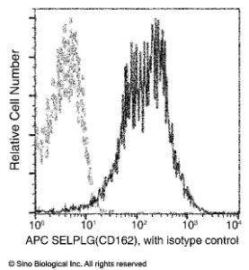 Anti-PSGL-1 Rabbit Monoclonal Antibody (APC (Allophycocyanin)