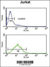 Anti-TPT1 Rabbit Polyclonal Antibody