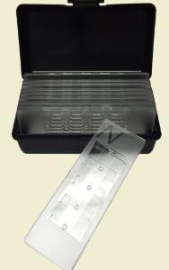 4-Chip Disposable Hemocytometer, Neubauer Improved, Bulldog Bio
