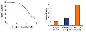 Sirt1 Inhibitor/Activat Scre Kit Fluorom, BioVision