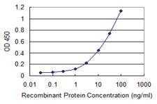 Anti-PDIA5 Mouse Monoclonal Antibody [clone: 3A3]