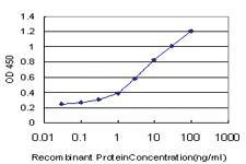 Anti-RASGRP2 Mouse Monoclonal Antibody [clone: 3D8]