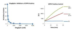 Dpp4 Inhibitor Screening Kit, BioVision