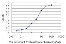 Anti-RAMP3 Mouse Monoclonal Antibody [clone: 1C11]