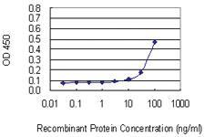 Anti-LILRB2 Mouse Monoclonal Antibody [clone: 1D4]