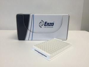 Corticosterone ELISA kit, Enzo Life Sciences