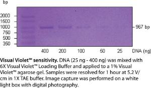 VWR Life Science Visual Violet™ Gel Kit