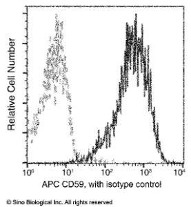 Anti-CD59 Rabbit Monoclonal Antibody (APC (Allophycocyanin)) [clone: 014]
