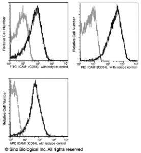 Anti-ICAM-1 Rabbit Monoclonal Antibody (APC (Allophycocyanin)) [clone: 037]