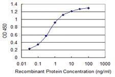 Anti-WWP1 Mouse Monoclonal Antibody [clone: 1A7]