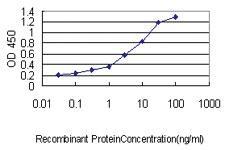 Anti-WFDC2 Mouse Monoclonal Antibody [clone: 3F9]