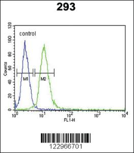 Anti-AIFM1 Rabbit Polyclonal Antibody
