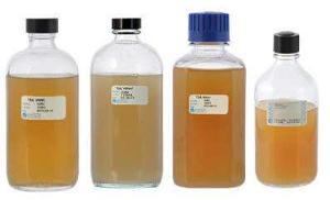 Tryptic Soy Agar (TSA), Soybean Casein Digest Agar, Hardy Diagnostics