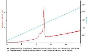 IL-27b / EBI-3, human recombinant, BioVision