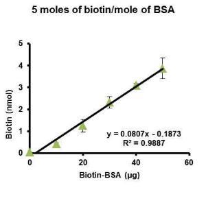 bovine serum albumin bsa biotinylated  biotinbsa biovision vwr