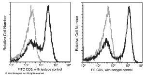 Anti-CD5 Mouse Monoclonal Antibody (PE (Phycoerythrin)