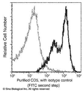 Anti-CD5 Mouse Monoclonal Antibody (APC (Allophycocyanin)