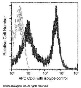 Anti-CD6 Mouse Monoclonal Antibody (APC (Allophycocyanin)